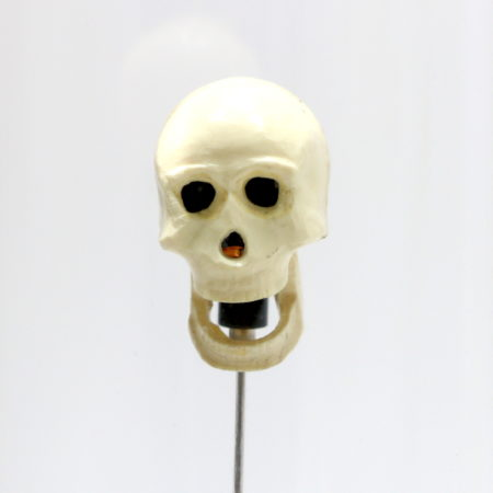 Talking Skull (Early) by Anverdi